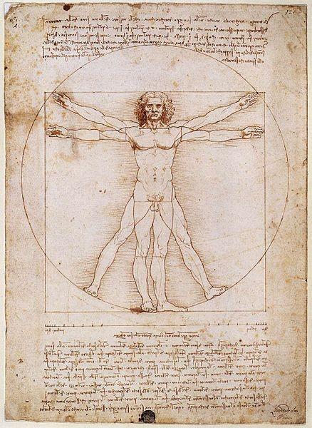 El hombre de Vitruvio. Leonardo da Vinci, 1490. Galería de la Academia, Venecia. Representa las proporciones ideales del cuerpo humano.